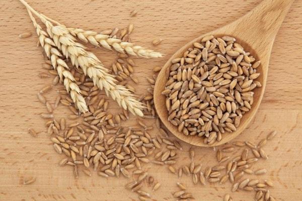 Sveikas maistas: kviečių gemalai